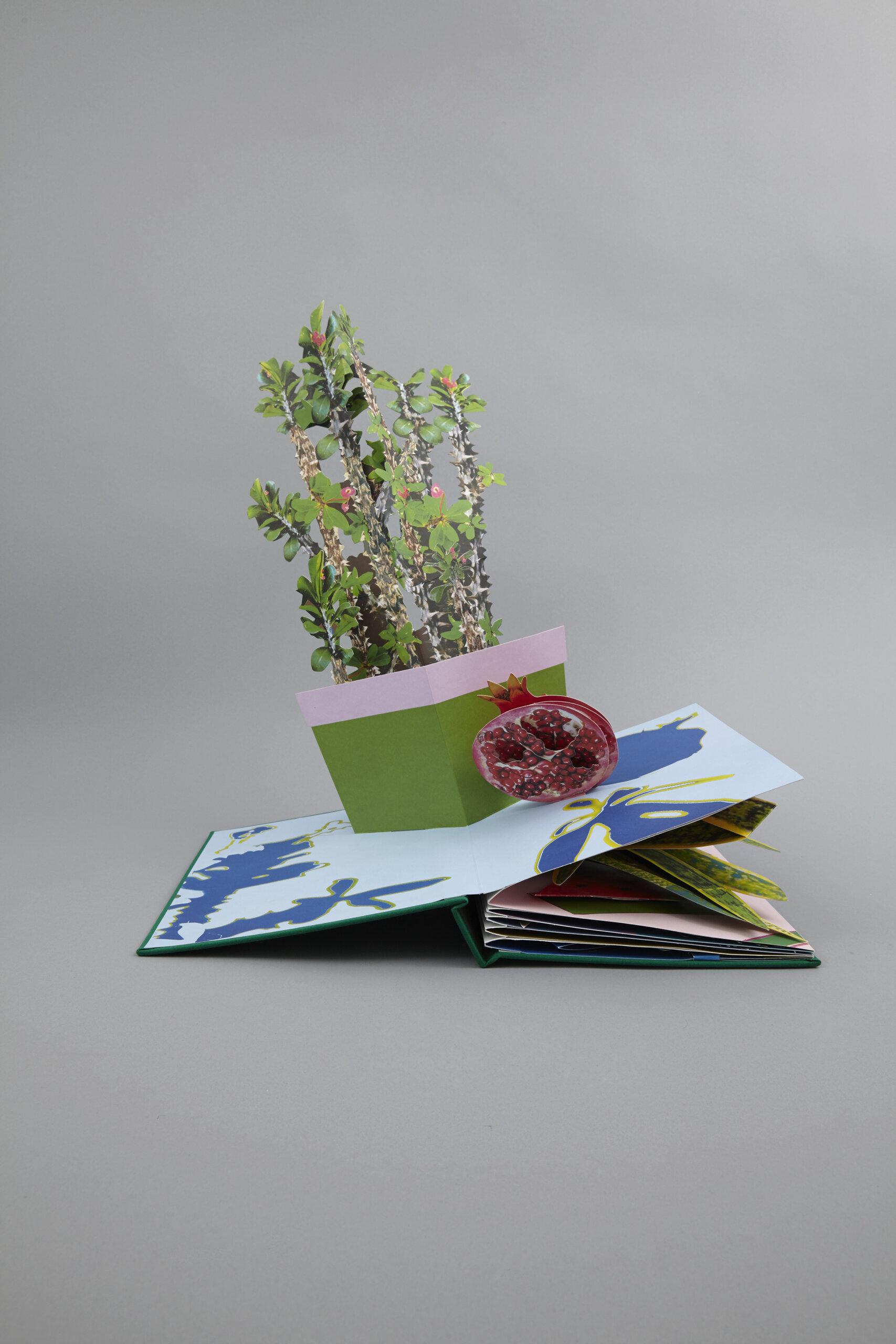 gordon-houseplants-delpire-co