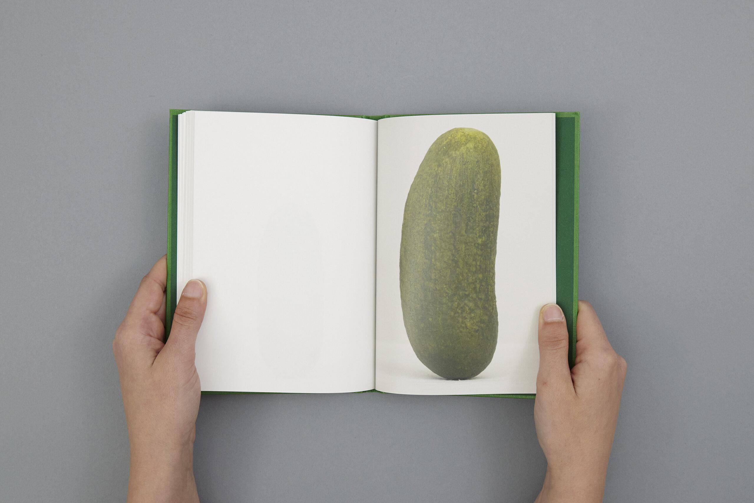 wurm-self-portrait-47-pickles-delpire-co